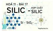 Tính chất hoá học của Silic dioxit, axit Silixic, muối Silicat và bài tập về Silic - hoá 11 bài 17